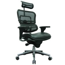 Ergohuman High-Back Mesh Manager Chair with Arms