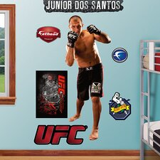 UFC Wall Graphic