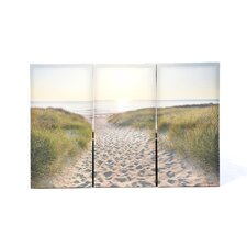 Graham and Brown Beach Walk Three Piece Photographic Print on Canvas (Set of 3)