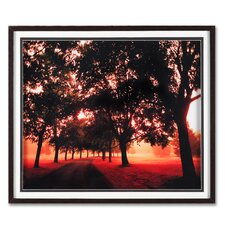 "<strong>Graham & Brown</strong> Morning Walk Framed Print Art - 24"" X 28"""