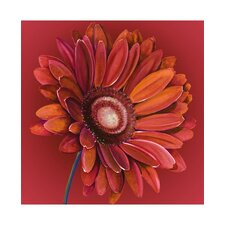 <strong>Graham & Brown</strong> Hand Painted Gerbera Canvas