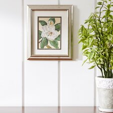 'Afternoon Magnolia' Framed Print