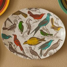 <strong>Thomas Paul</strong> Ornithology Tray