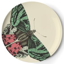 "<strong>Thomas Paul</strong> Metamorphosis 9"" Side Plate (Set of 4)"
