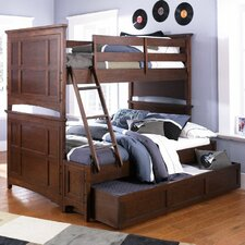 Riley Twin over Full Panel Bunk Bed with Ladder