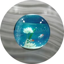 Small Round Aquarium
