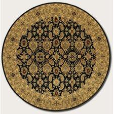Royal Kashimar All Over Vase Black Area Rug