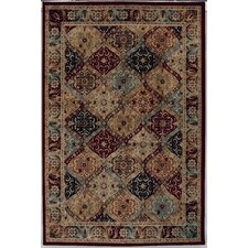 <strong>Shaw Rugs</strong> Accents Mayfield Multi-Colored Rug