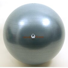 <strong>Natural Fitness</strong> Burst Resistant Exercise Ball