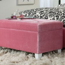 Young Parisian Upholstered Storage Bench