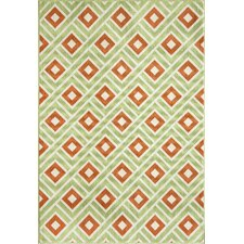 Baja Green Indoor/Outdoor Rug