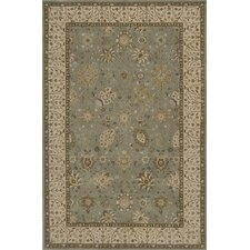 Zarin Jade/Brown Area Rug