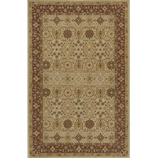Zarin Gold/Brown Area Rug