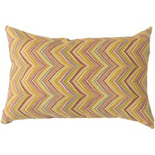 Charm in Chevron Pillow Cover