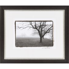 Distant Trees on FAP by Vision Studio Framed Photographic Print