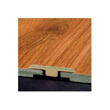 Laminate T-Molding with Track