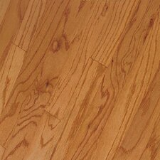 "Northshore Strip 2-1/4"" Engineered Red Oak Flooring in Butterscotch"