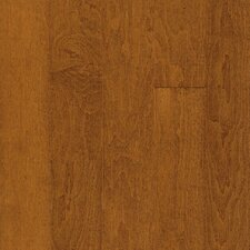"Westchester 3-1/4"" Engineered Maple Flooring in Cinnamon"