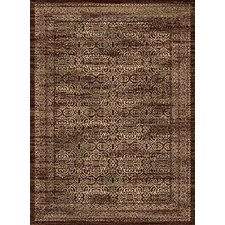 Encore Artisani Dark Wine Rug