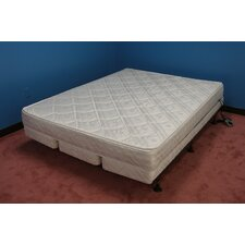 Organic Complete Softside Waterbed Spectacular Bid Set