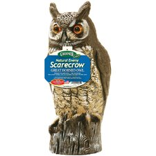 Molded Owl Statue