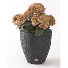 Vista Resin Wicker Round Planter with Curve