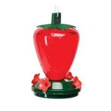 Strawberry Decorative Hummingbird Feeder