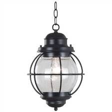 Hatteras 1 Light Hanging Lantern