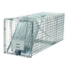 Prof Raccoon Trap
