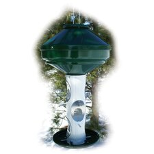 Avian Mixed Hopper Bird Feeder