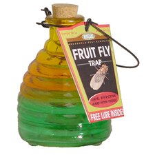 Glass Fruit Fly Trap