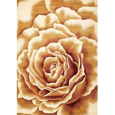 Corinthian Floral Splendor Rug