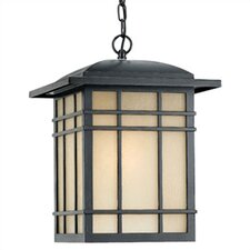 Hillcrest 1 Light Outdoor Pendant