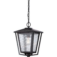 Alfresco 1 Light Outdoor Hanging Lantern