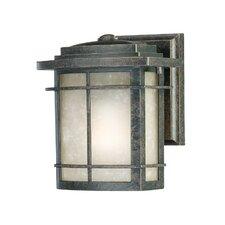 Galen 1 Light Outdoor Wall Lantern