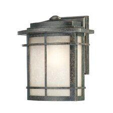Galen 1 Light Outdoor Wall Lantern