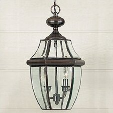 Newbury 2 Light Outdoor Hanging Lantern
