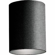 Cylinder 1 Light Outdoor Incandescent Flush Mount