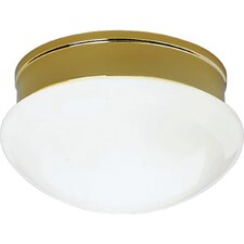 <strong>Progress Lighting</strong> White Glass 2 Light Flush Mount