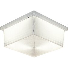 Hard-Nox Incandescent 2 Light Outdoor Flush Mount with Diffuser