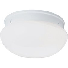 "<strong>Progress Lighting</strong> Flush Mount Compact Fluorescent 10"" Fitters"