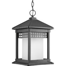 <strong>Progress Lighting</strong> Merit 1 Light Outdoor Hanging Lantern