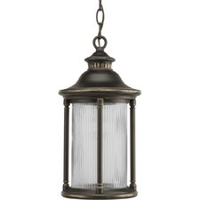 Reside 1 Light Outdoor Hanging Lantern