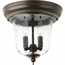 Ashmore 2 Light Flush Mount