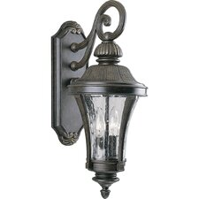 <strong>Progress Lighting</strong> Hanging 2 Light Outdoor Wall Lantern