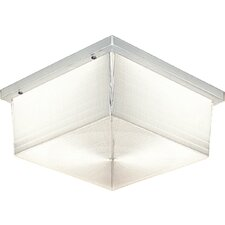Hard-Nox Fluorescent 2 Light Outdoor Flush Mount