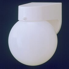 Plastic Outdoor Globe 1 Light Wall Sconce