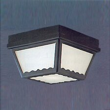 <strong>Thomas Lighting</strong> 2 Light Outdoor Flush Mount