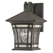 Riverbend Exterior 1 Light Water Glass Wall Lantern