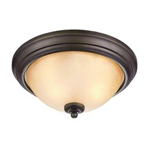 <strong>Westinghouse Lighting</strong> Chapel Hill 2 Light Flush Mount